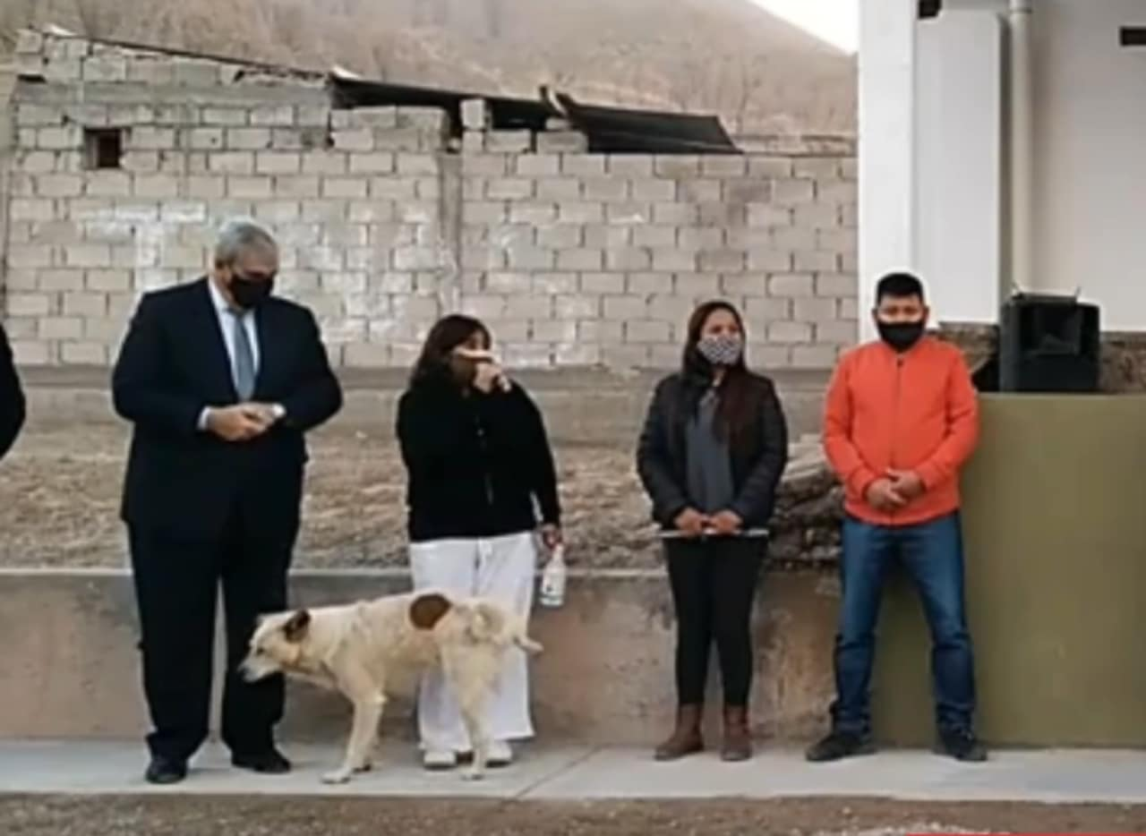 Perro se orina en presidenta municipal en Argentina
