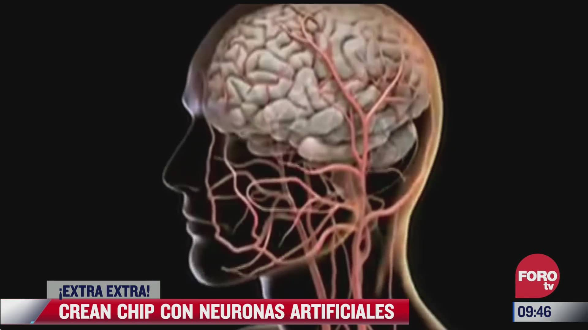 extra extra crean chip con neuronas artificiales