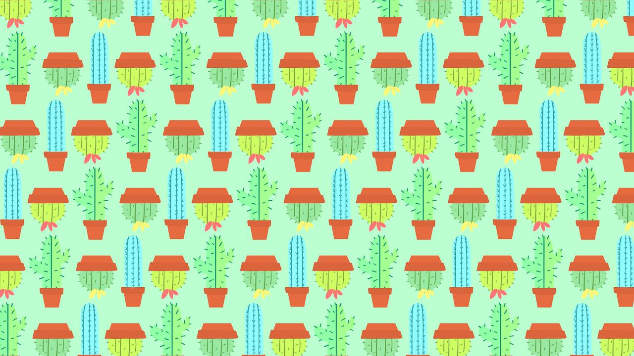 Encuentra los cactus sin espinas