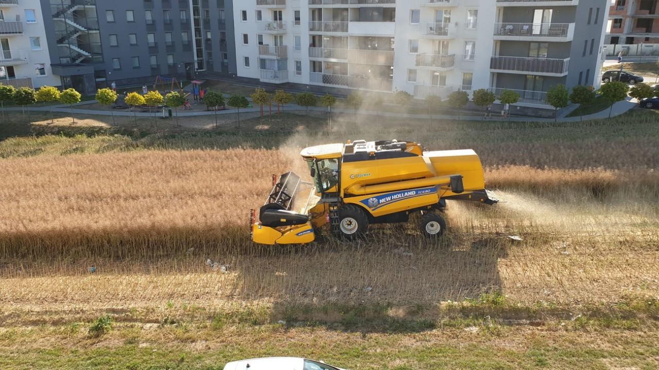 Agricultor no vende tierras en Polonia; campo en la ciudad