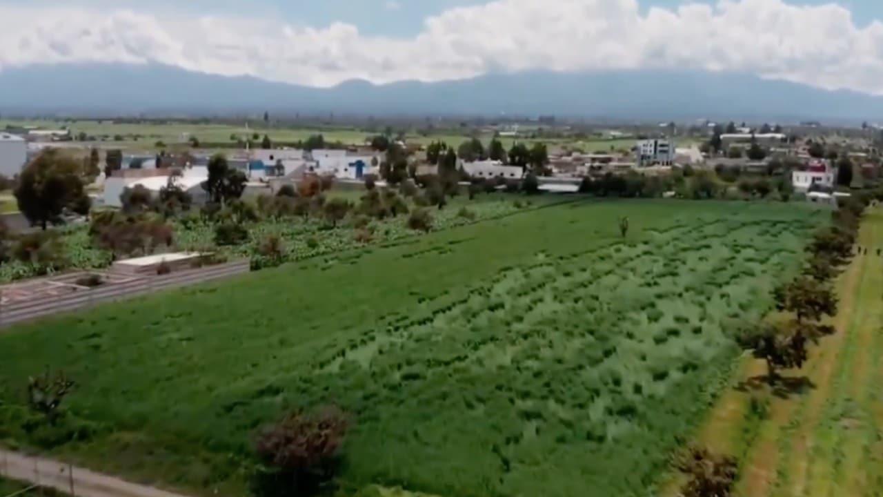 Extrañas figuras aparecen en campos cercanos al socavón de Puebla
