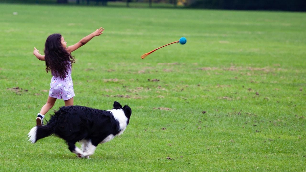 Usuarios viralizan caso de una niña criada con perros