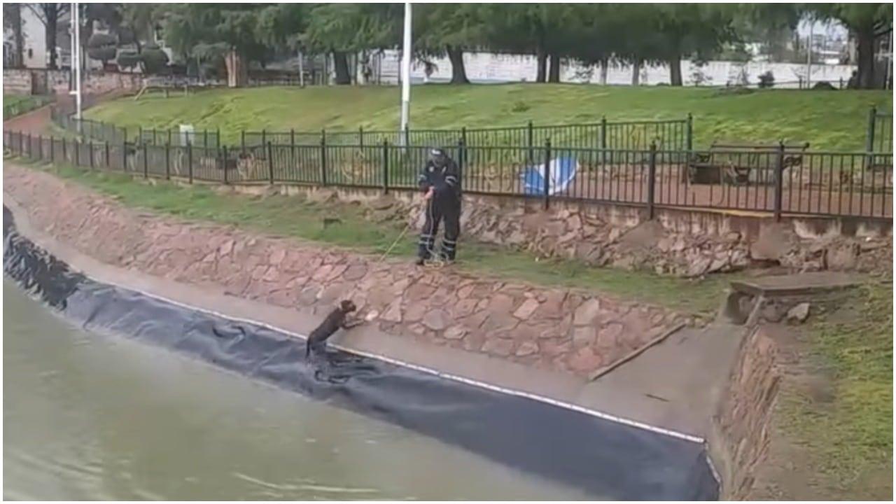 Hombre logra rescate de perro en parque de Durango