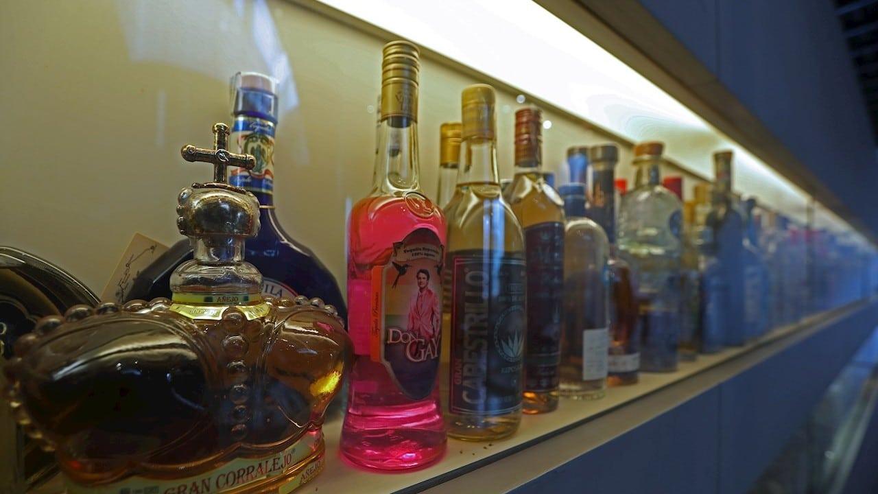 México celebra el Día Mundial del Tequila