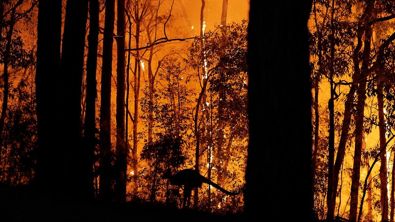Rusia utiliza aviones militares para combatir incendios forestales en Siberia