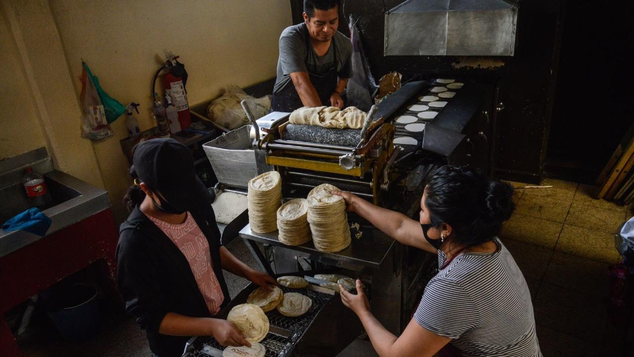 Prevén importación de maíz para evitar aumento en precio de tortilla.
