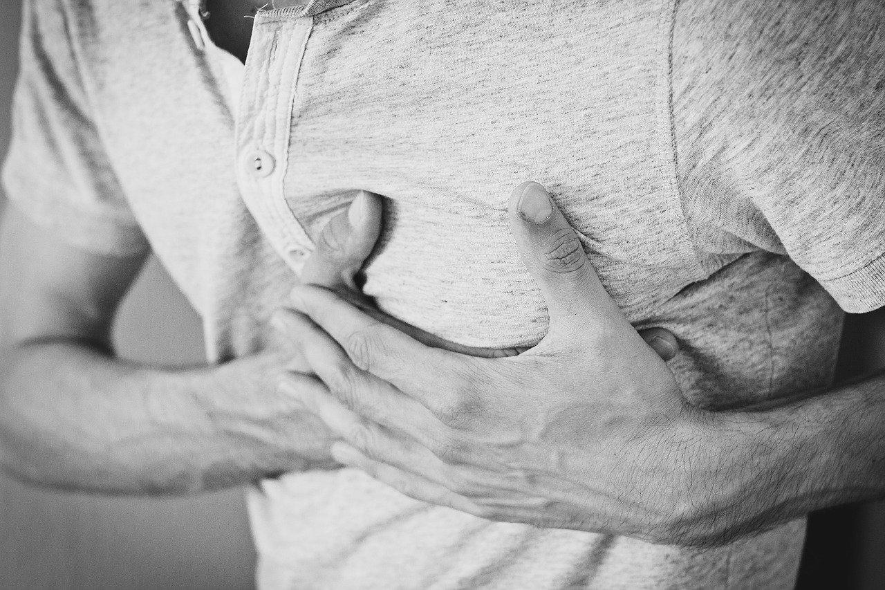 Veneno de araña tela de embudo podría ayudar a personas con ataque al corazón