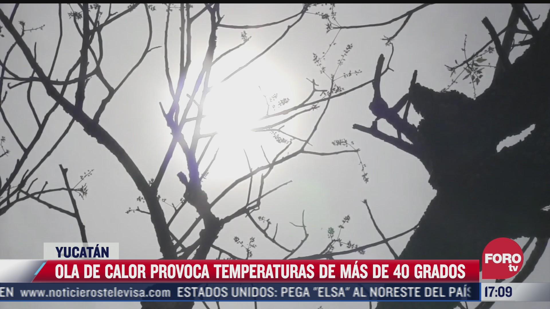 yucatan registra temperaturas superiores a 40 grados