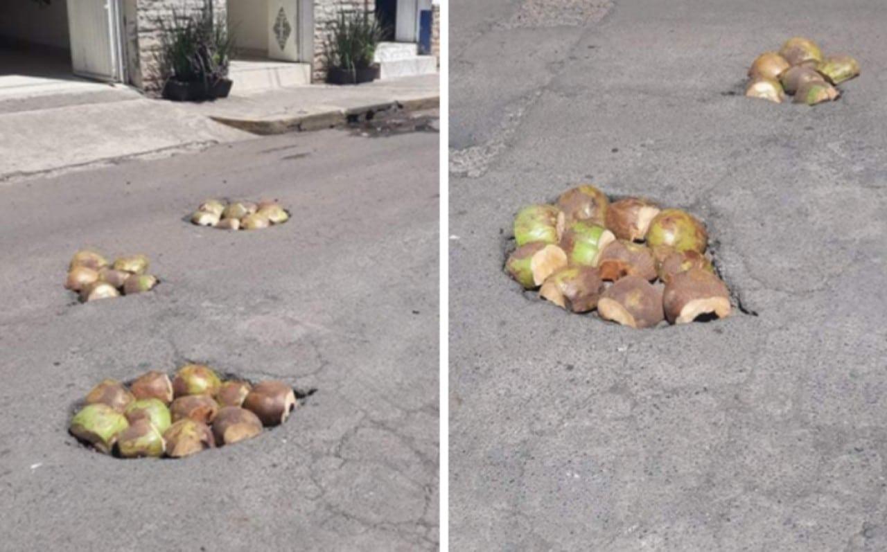 Tapan los baches con cocos en Nayarit: Fotos
