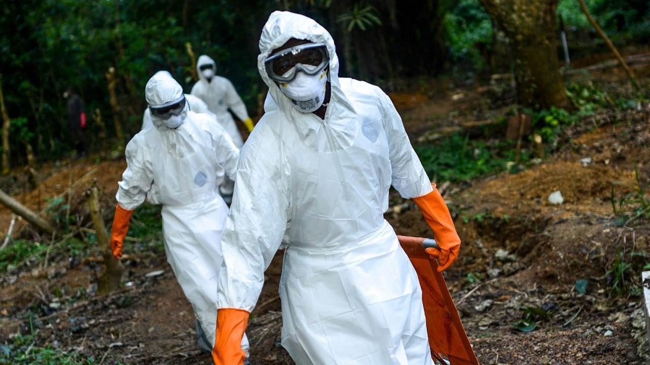 ébola, virus, Marburgo, África, imagen ilustrativa