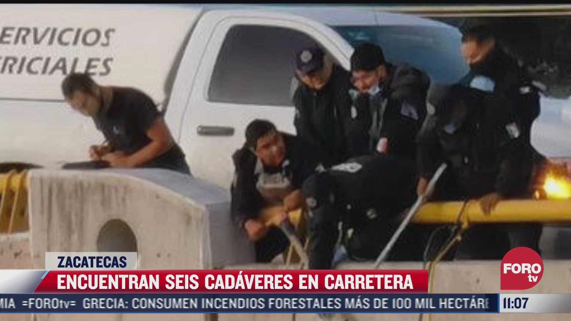 Encuentran seis cadáveres en carretera de Zacatecas