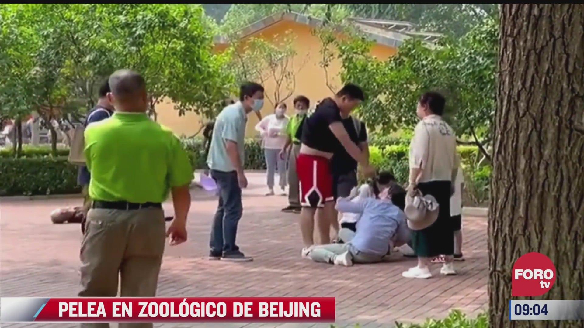 graban pelea entre dos familias en un zoologico