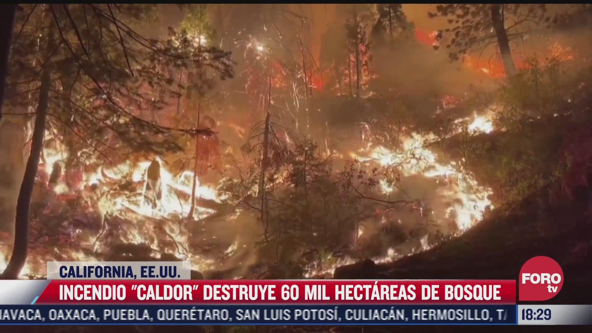 incendio caldor destruye 60 mil hectareas de bosque en eeuu
