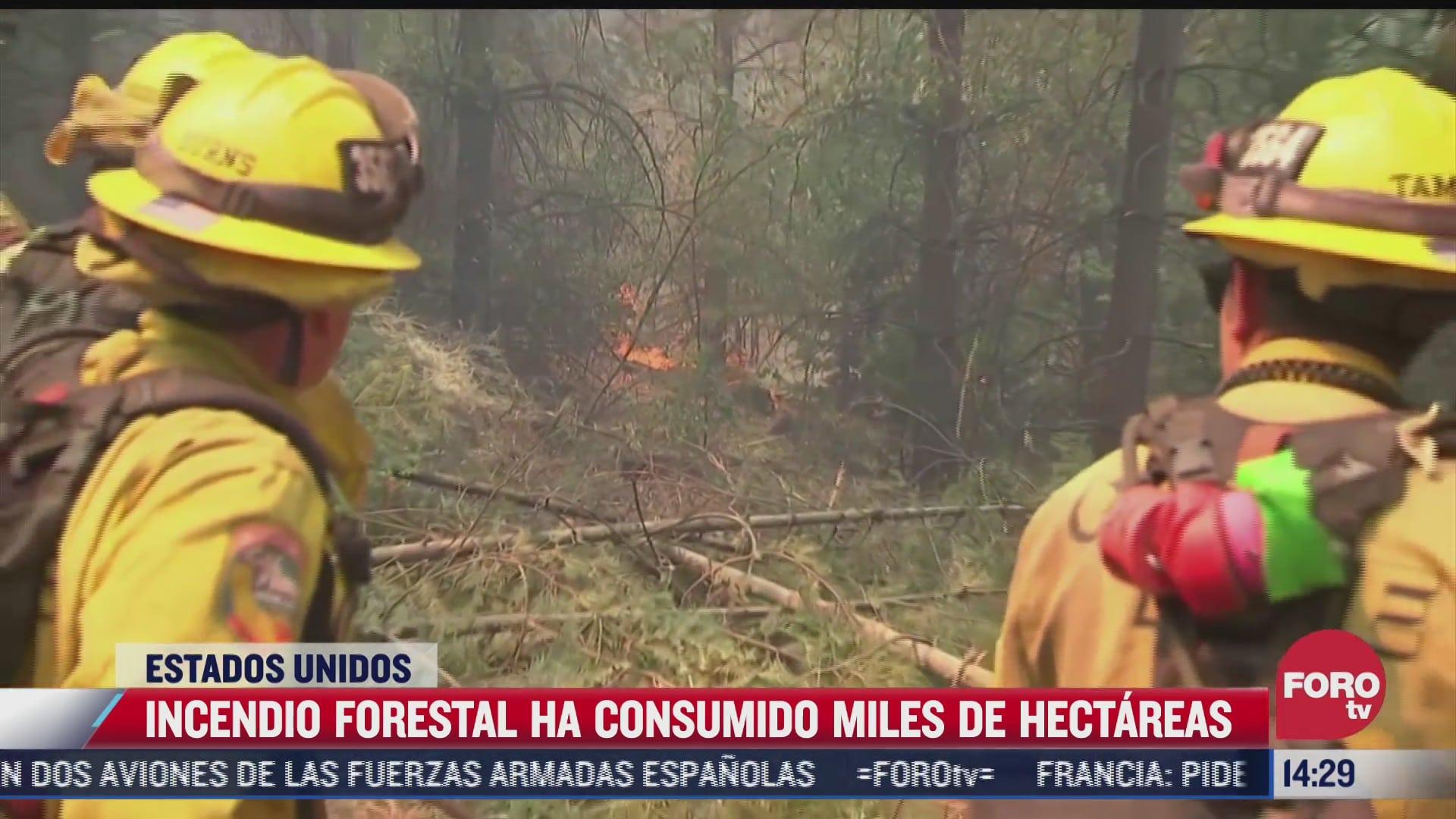 incendio forestal en california ha consumido miles de hectareas