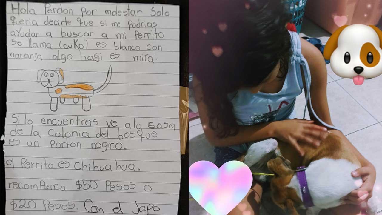 Viral: Niña hizo dibujo de su perrito para encontrarlo