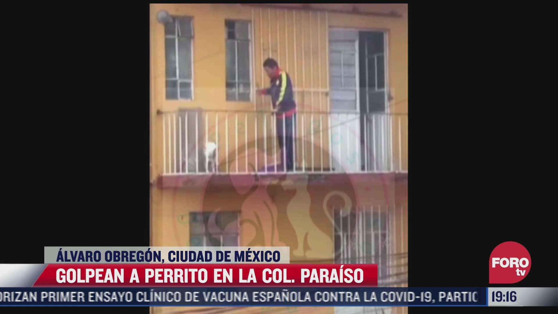 video hombre golpea a perro en alcaldia alvaro obregon
