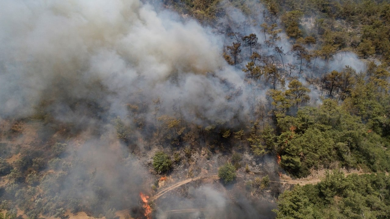 Video: Suman ocho muertos y más de 130 focos en incendios de Turquía