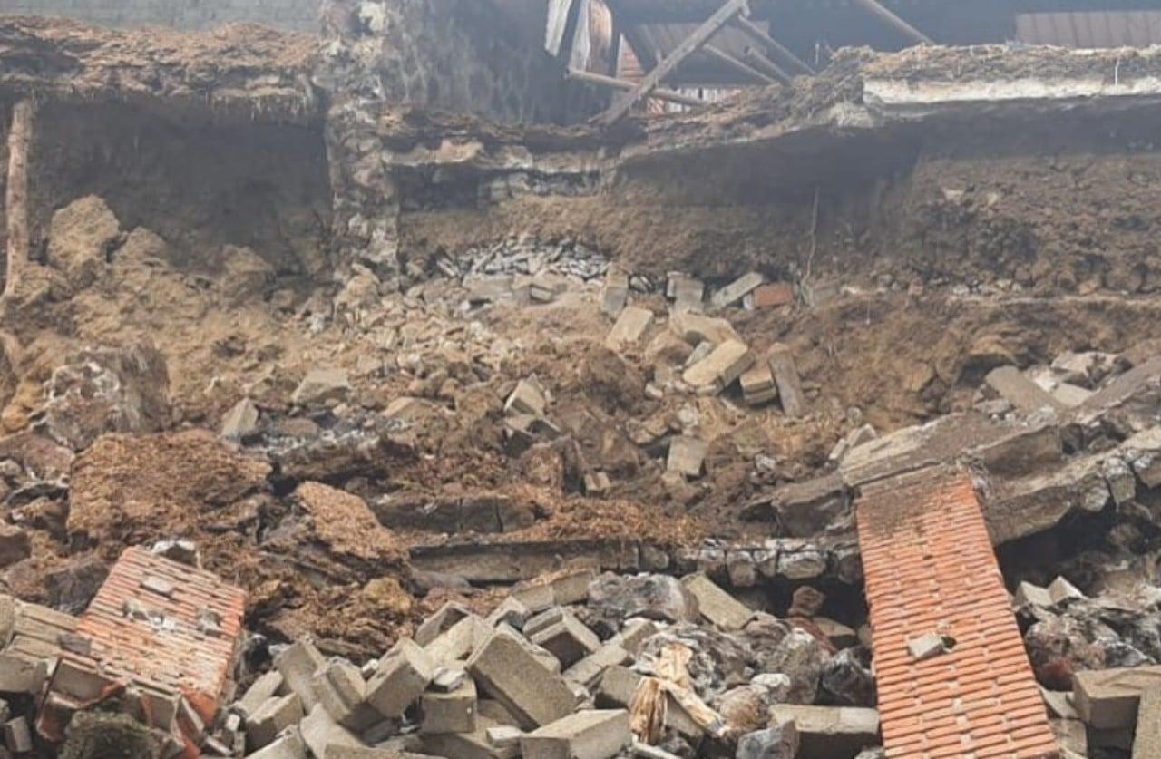 Deslave en Xochimilco entierra a perros