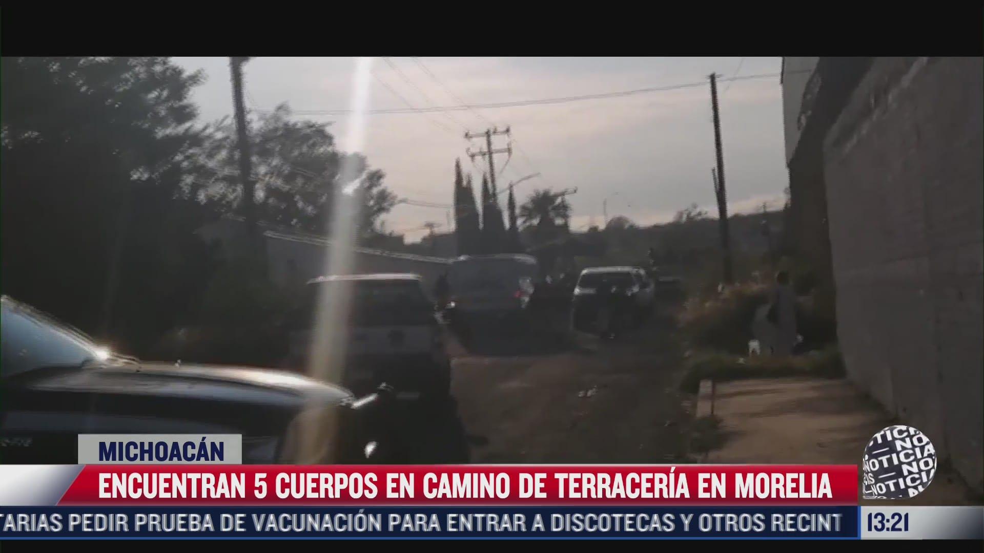 encuentran 5 cuerpos en camino de terraceria en michoacan