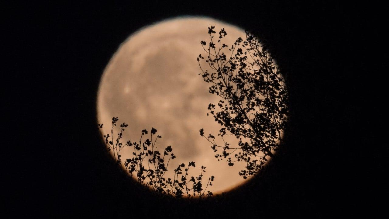 luna llena, luna de la cosecha, harvest moon, fotos
