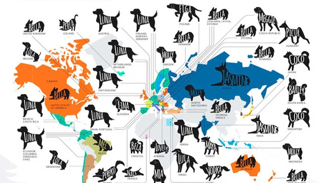 Mapa muestra nombre de perro más popular en cada país del mundo