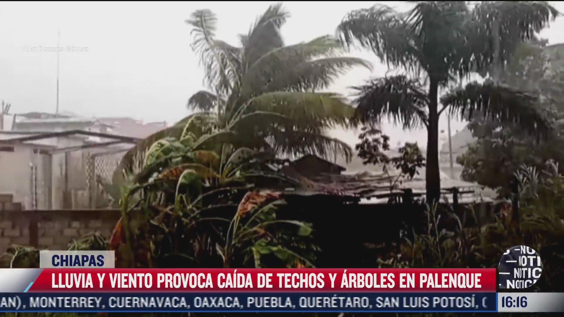 provocan fuertes vientos danos en palenque chiapas
