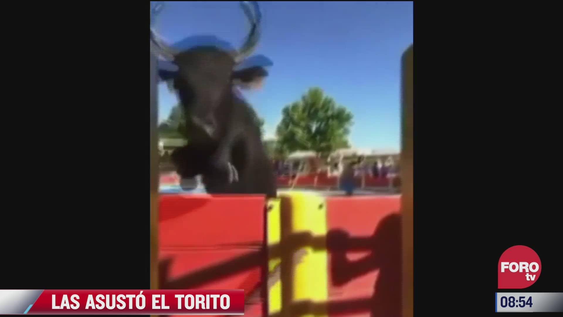 video toro salta el ruedo y se va contra dos chicas que grababan el momento