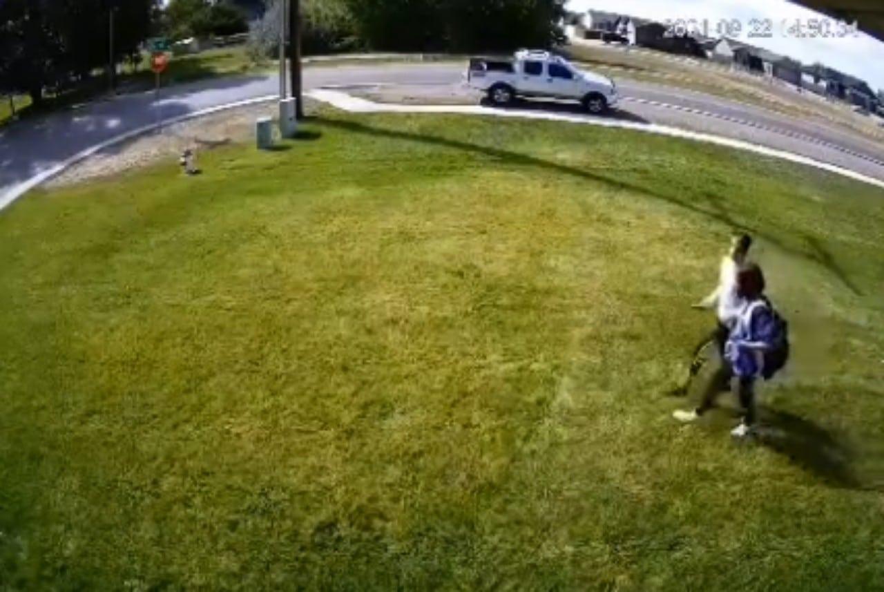 Video: Se cansó de que pisaran su patio y puso un aspersor