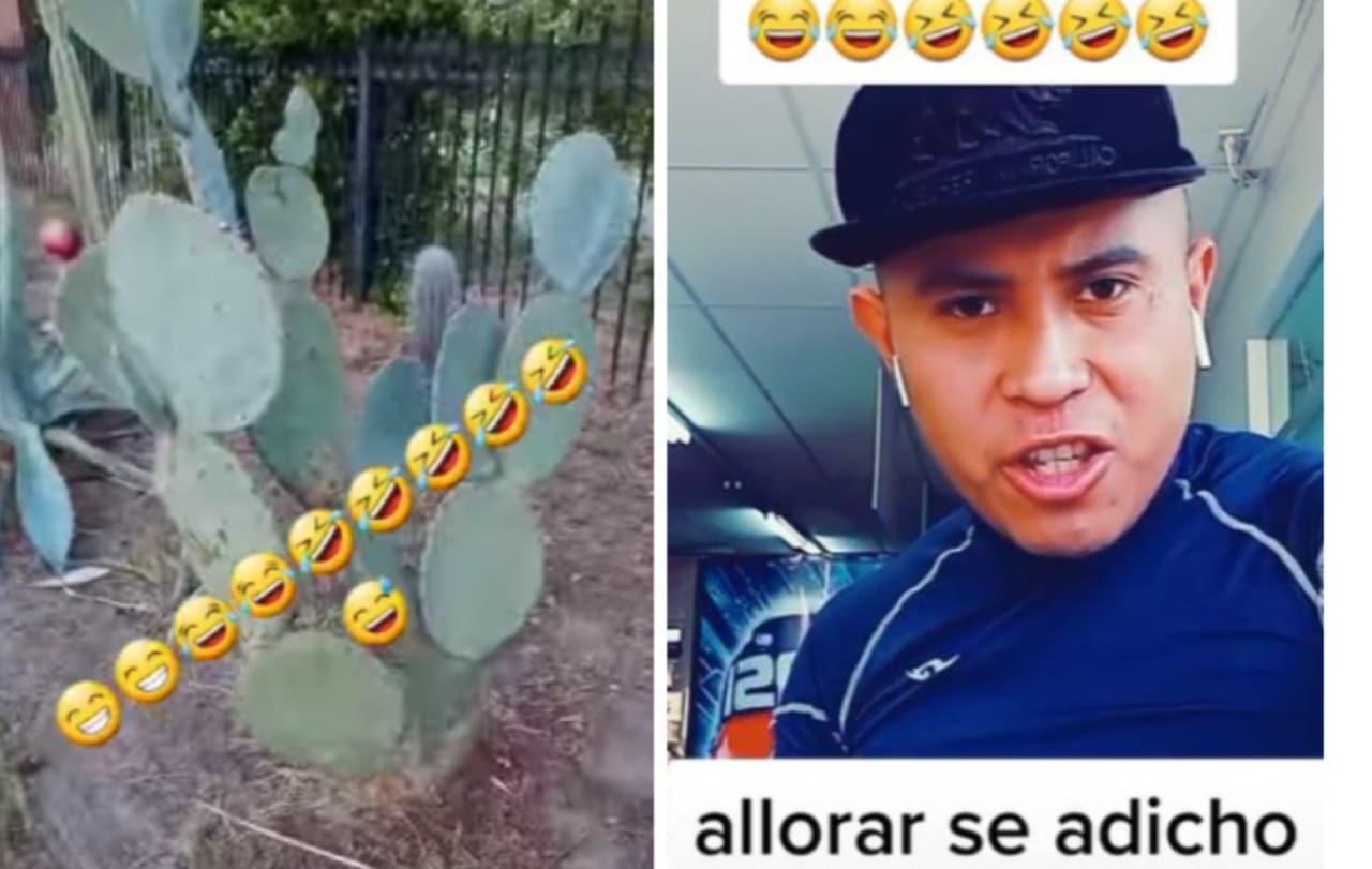 Tiktoker se burla de los mexicanos por comer nopales