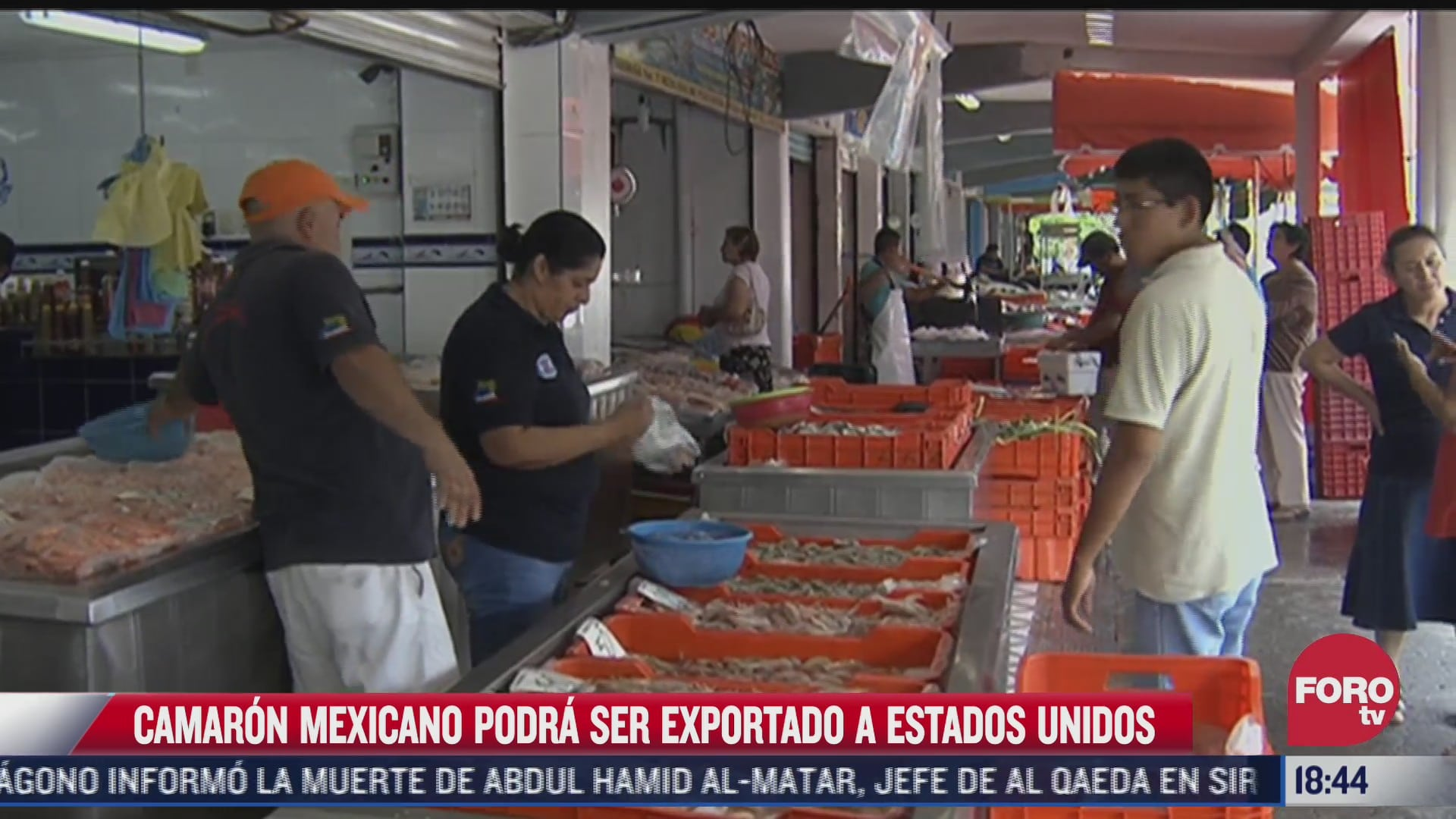 camaron mexicano podra ser exportado a estados unidos
