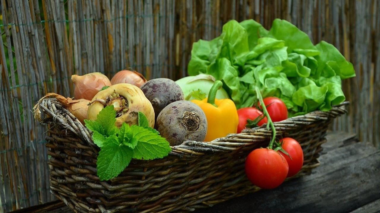 Día Mundial de la Alimentación en la FAO, fecha e importancia