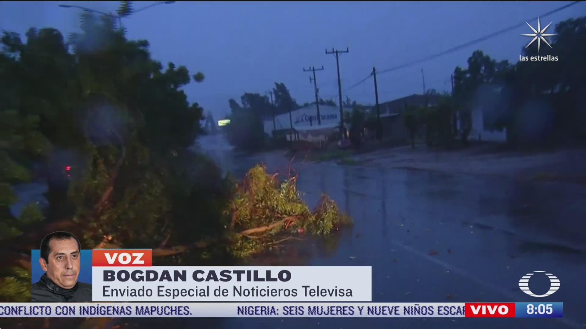huracan pamela provoca lluvias fuertes y derriba arboles en sinaloa