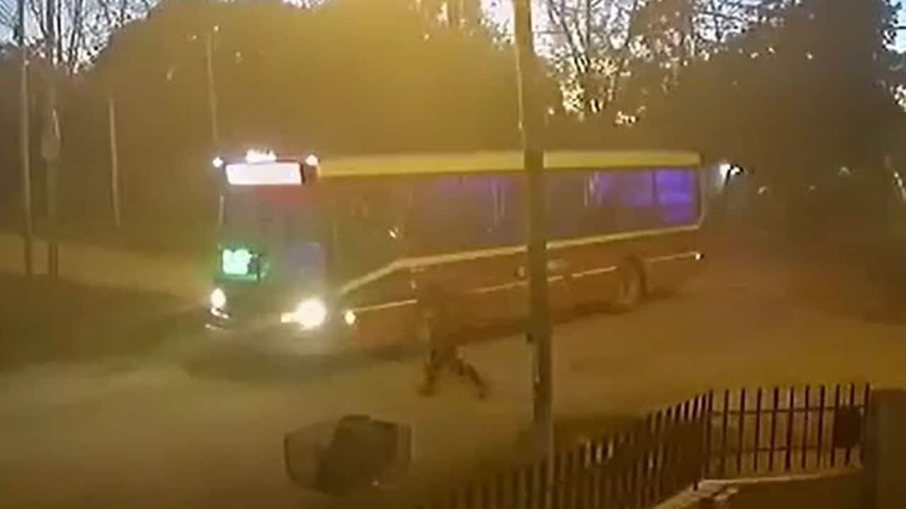 Mujer en Argentina muere atropellada tras intentar tomar un autobús