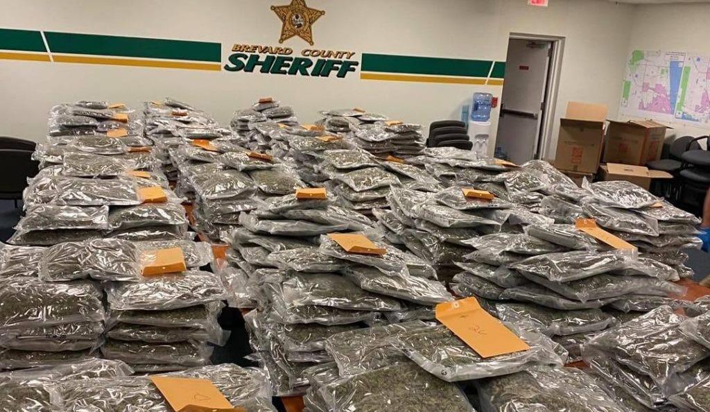 Policía en Florida tras la pista de criminales tras hallazgo de 350 kilos de marihuana.