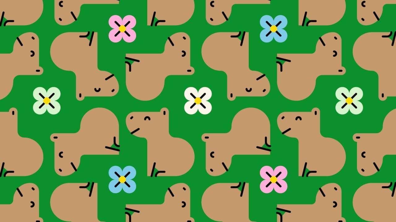 Encuentra los dos capibaras enojados.