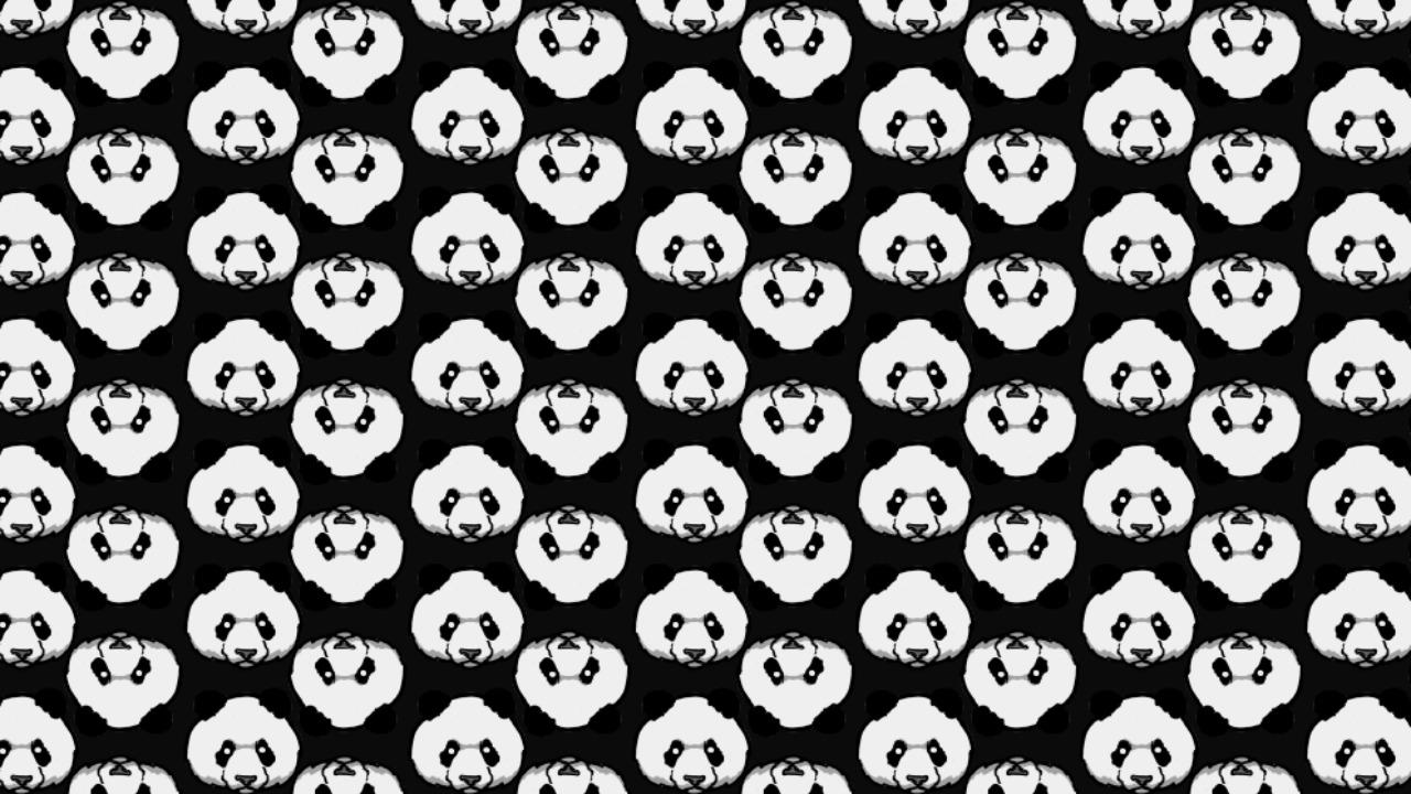 En este reto visual viral deberás encontrar los osos polares entre pandas